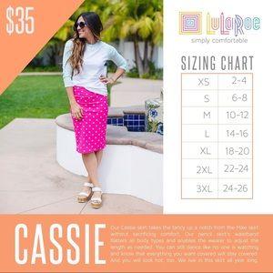 LuLaRoe Skirts - LuLaRoe multi-colored Cassie skirt size L NWT